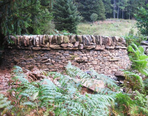 a selection of dry stone walls
