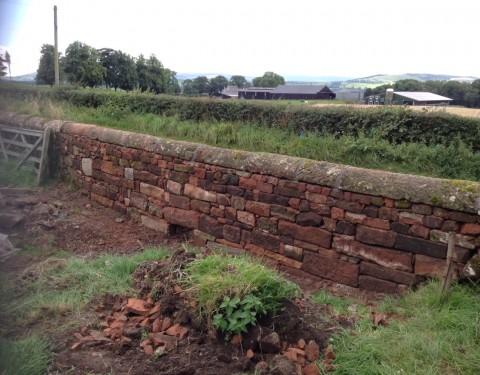 A selection of garden walls